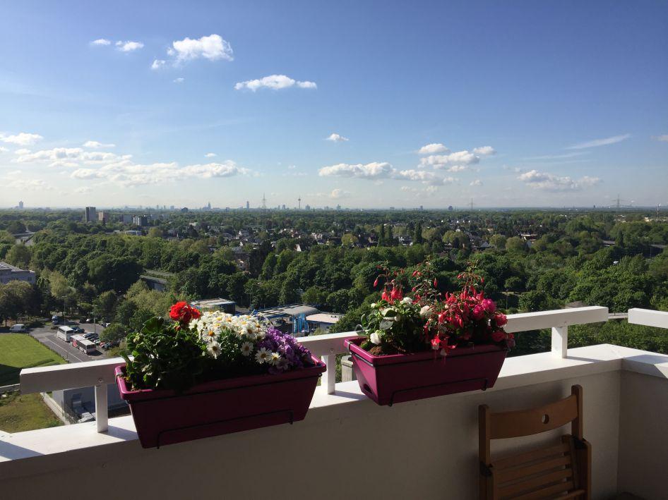 Mit den Blumen wird die Aussicht im Hochhaus noch schöner. Foto: GAG.