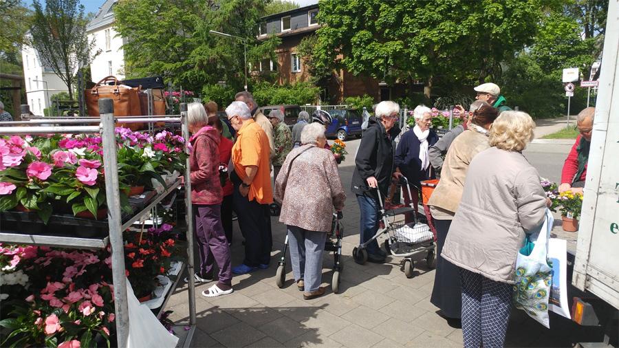 Auch viele ältere Bewohner besuchten die Blumenmärkte vor der eigenen Haustür (9. Mai, Blumenmarkt von Sahle Wohnen, Boltensternstraße 8, Riehl)