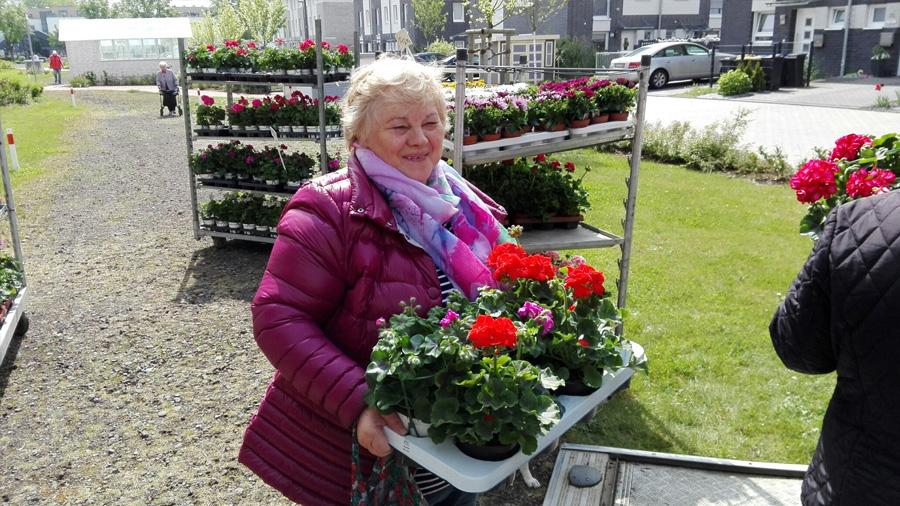 Gut gelaunt trugen die Marktbesucher die begehrten Blumen palettenweise nach Hause.