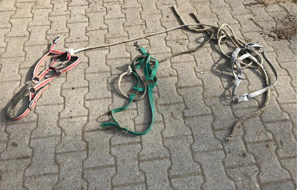 Sichergestellte Halfter, Foto Polizei Köln