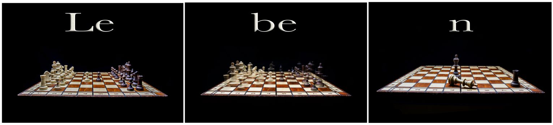 Das Schach und das Leben