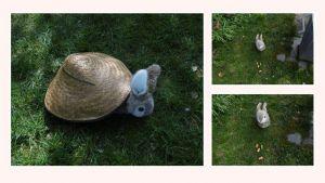 Unz Bär trifft den Osterhasen